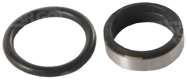 081129 - Injector Seal Kit